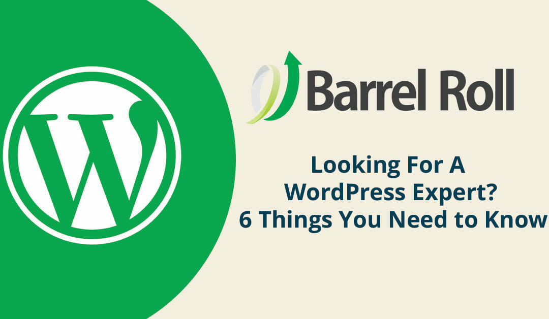 Looking For A WordPress Expert? 6 Things You Need to Know