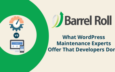 What WordPress Maintenance Experts Offer That Developers Don't